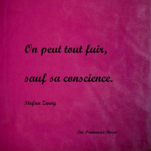 citations-sur-la-conscience-11